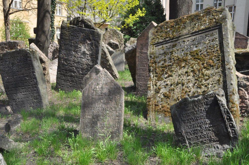 zidovska genealogie